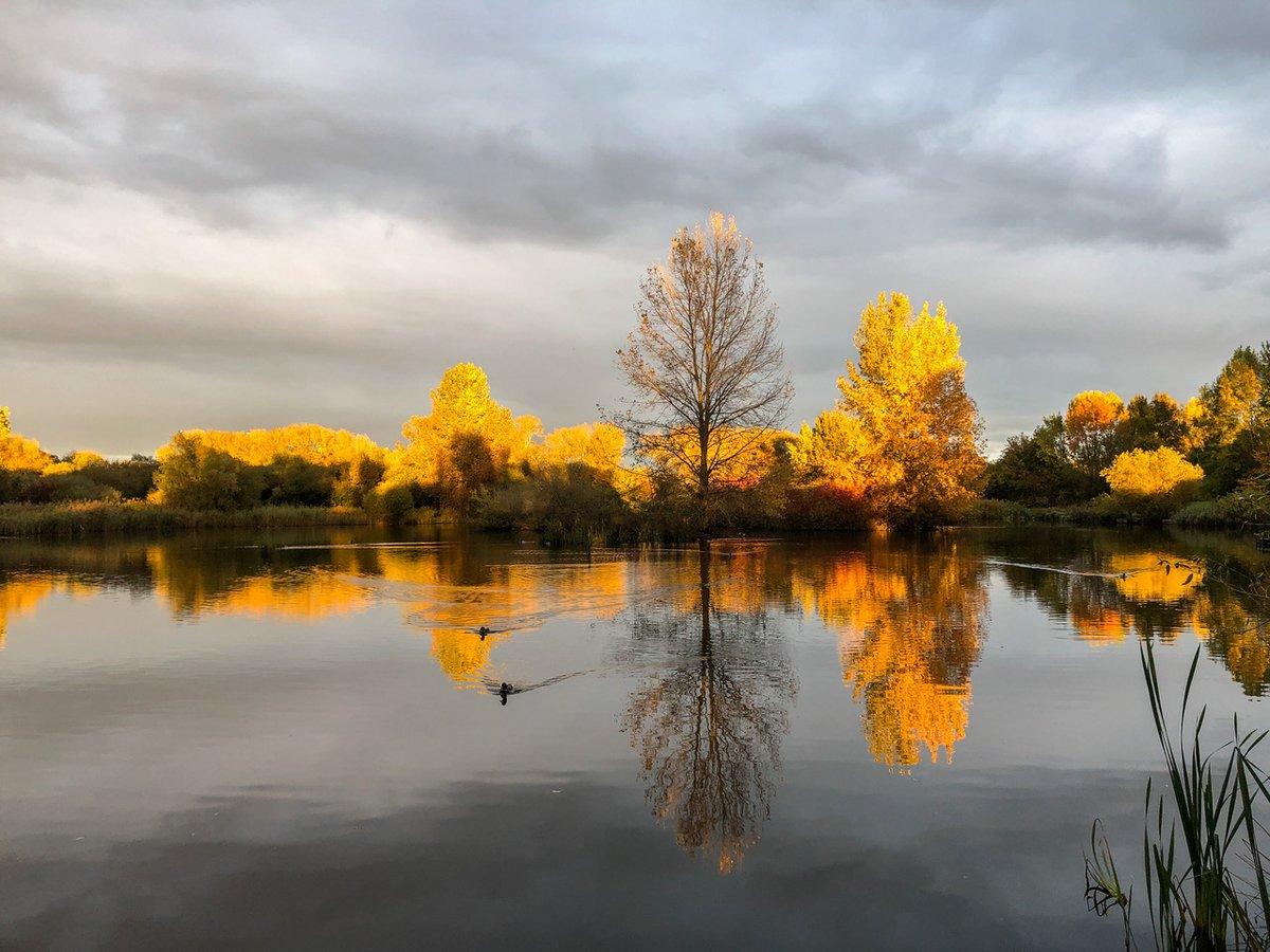 Todays Photo of the Day is taken at Mouldon Country Park in Swindon by Steve Blundell#BBCCountryfileMagPOTD