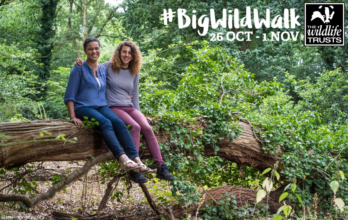 Happy #BigWildWalk week 🙌🙌 Remember to share your photos with us 💚 you can still sign up here >  https://t.co/BMnY3j0TUT https://t.co/oCdwGT1kaa