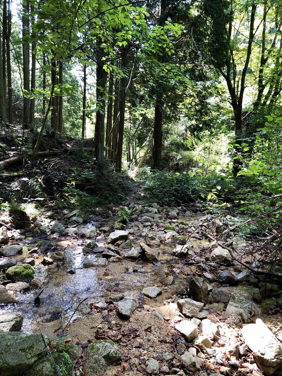 石楠花山 ヌケ谷(その4) 撮影日:9月19日 撮影場所:神戸市北区山田町下谷上 ヌケ谷の底に到達し、小川を渡ります。神戸市街地を流れる生田川の支流になります。 https://t.co/dSU1UvsDIo https://t.co/VY621s6ATM