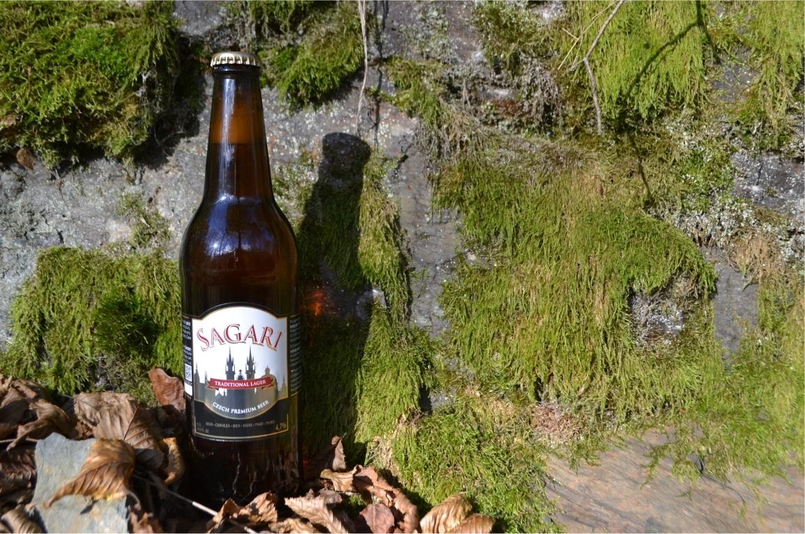 Autumn in the Czech Republic #beer #czechbeer #lager #taste https://t.co/xYGVGfR0wQ