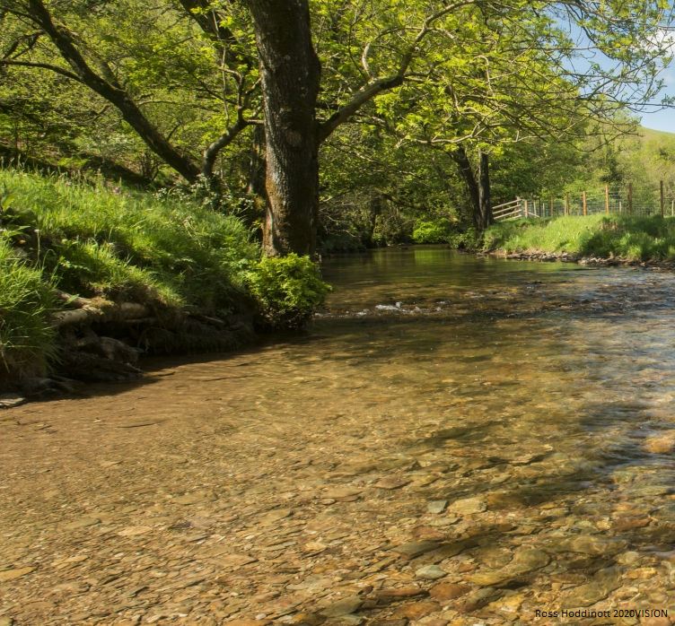 Last week we gave evidence to the EFRA committee on flooding to encourage the Government to use more natural flood management techniques to slow and store water. These techniques would help to reduce flood risk as well as supporting nature's recovery. 💧 https://t.co/vq9etk7TA7 https://t.co/zpTcwlxsqh