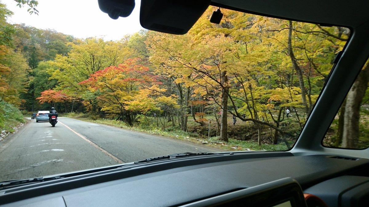 清見せせらぎ街道をドライブ 紅葉がとても綺麗でした🍁 ドライブ途中のお店でランチ キーマカレー 洋梨のスフレとっても美味しかった😋💕 https://t.co/3OXqIY8BS2