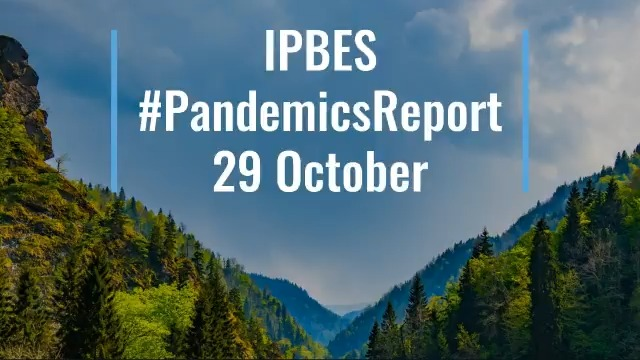 Image for the Tweet beginning: The @IPBES #PandemicsReport launches 29