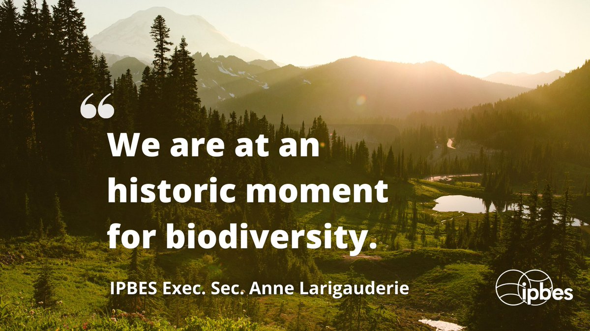 """""""As with #climatechange, what will ultimately matter for #biodiversity, beyond approval of an ambitious #post2020 biodiversity framework, is the strong political will to implement such a framework""""  Dr. Anne Larigauderie, @IPBES Executive Secretary @ 2020 @winwinaward Ceremony 💚 https://t.co/HnQHUvJA23"""