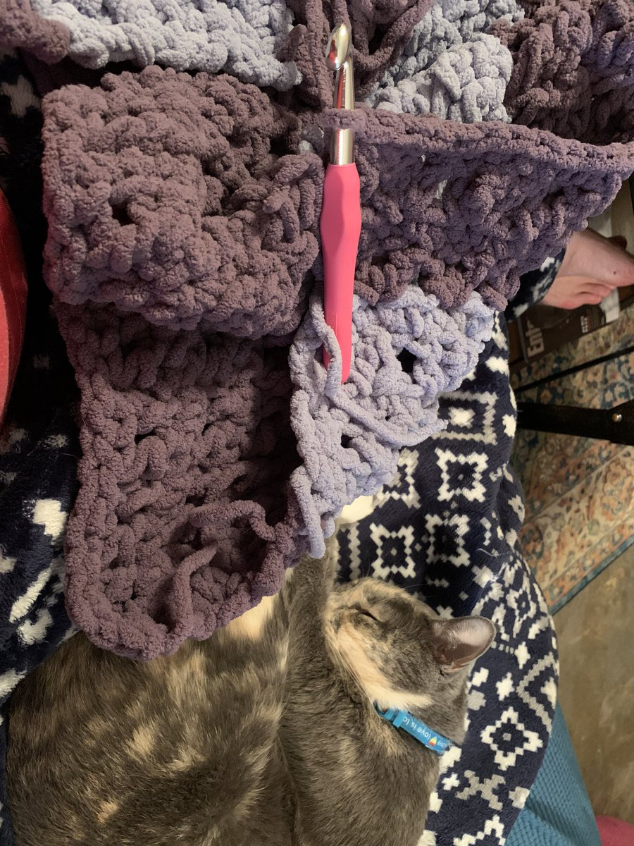 Spending my day off, resting on the couch, cuddling with Luna & working on a blanket for X. I'm using @BernatYarns & I've leveled up to alternating colors. #crochet #stressrelief https://t.co/3tAmfw5sf4