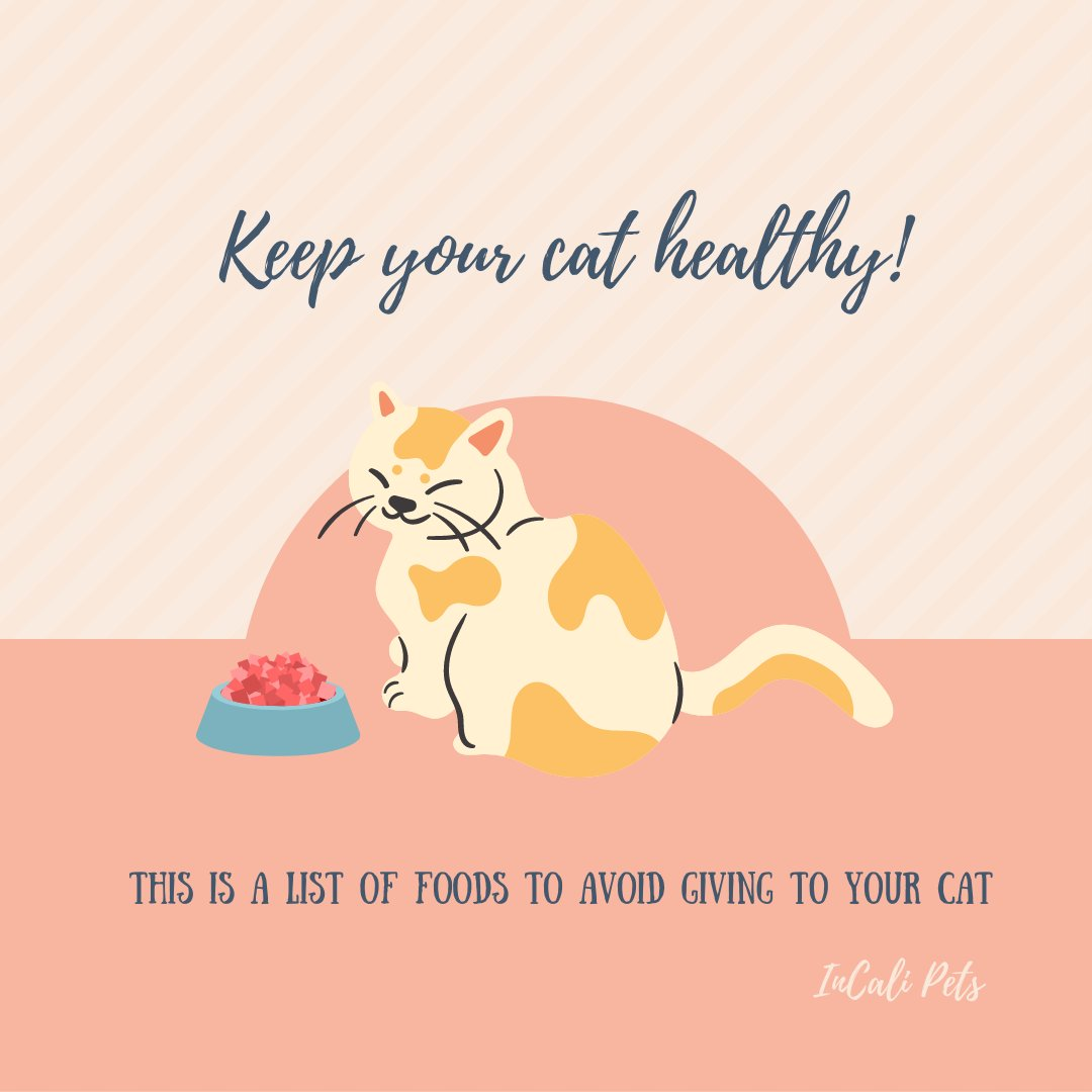 Remember, a healthy cat is a happy cat! Take note of foods to avoid! 😸📝  🙀❗ Make sure to join our official launch page (https://t.co/ScdL9r4o3M) for exclusive giveaways and discounts!  #InCaliPets #InCaliCats  #pets #cats #petproducts #petsupplies #catlovers https://t.co/5hdN55h7D0