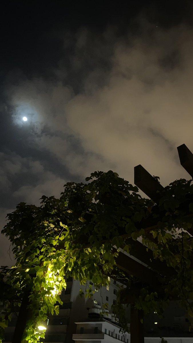「中秋烤肉」 覺得Elsa這招牌的兔子笑很應景 月亮很美還有火星可以看😉  #中秋 #烤肉 https://t.co/dbR4hAv0St