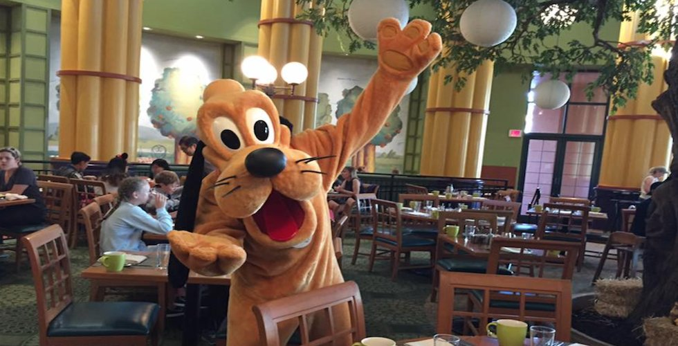 Bob Sehlinger, founder of the Unofficial Guides Series, shares with us his sense of humor in every Unofficial Guide. Today he delivers the first of several installments of The Importance of Being #Goofy. https://t.co/xktEGyxZWr #Disney https://t.co/LYPdCtKPET