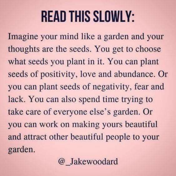 Happy Monday!!! Have a wonderful week!!!  #Happy #Healthy #Positive #Gratitude #Appreciation #ThinkHappyThoughts #Wellness #StayPositive #BeautifulGarden #ThinkHealthyToBeHealthy #ThoughtsBecomeYourReality #StayOnAPostiveFrequency #TakeCareOfYourselfEmotionally https://t.co/2mU9CuwNvM