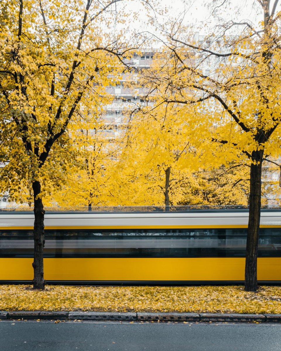 Yellow City. Trams seen in #Berlin in October 2020