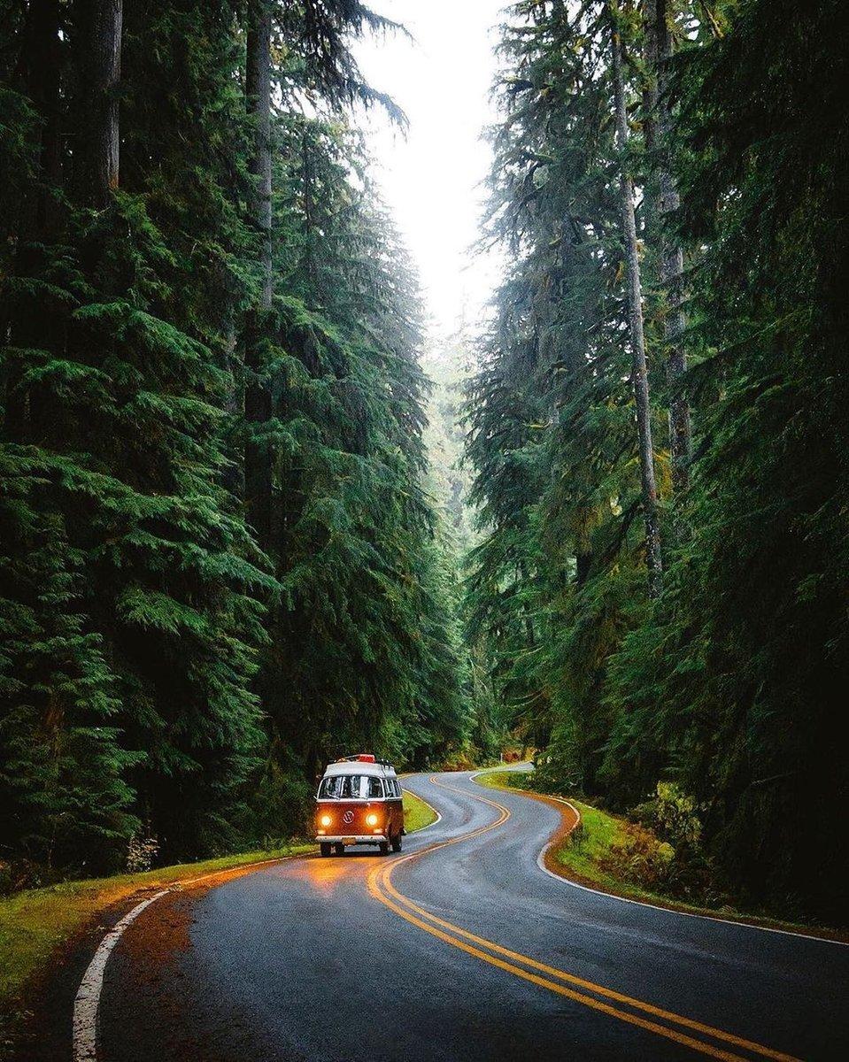 Road trippin' through the Hoh 🌲🚐 | 📸 @jguzmannn . . . . #adventure #wanderlust #vacation #travelgram #explore #artofvistuals #holiday #travelgear #inflatables #camping #watchthisinstagood #ourmoo#photographydydays #travelholic #timetochillbo #wheretochillbo https://t.co/v0s7hsyF4G
