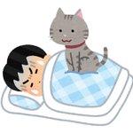 睡眠にお悩みの方は内臓関係が弱っているかも?「睡眠の養生」をお試しあれ!