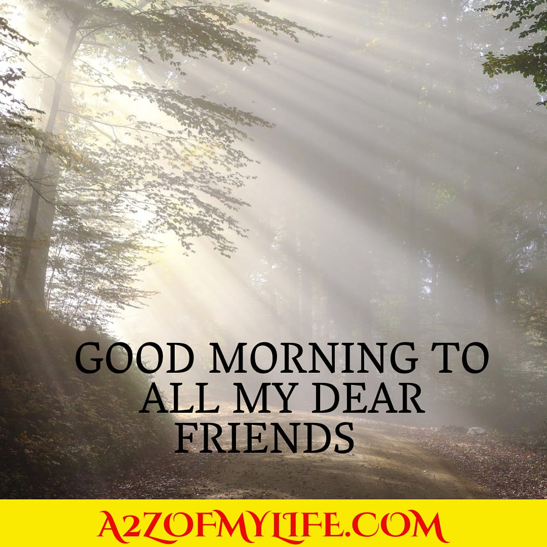 Hello My Dear friend very good morning 4 u & ur family  #goodmorning #positivevibes #positive #meditation #positivethinking #positiveenergy #positivequotes #positivethoughts #IamSoul #positiveattitude #positivemindset #positivevibesonly #positivity https://t.co/2gmITFShsY