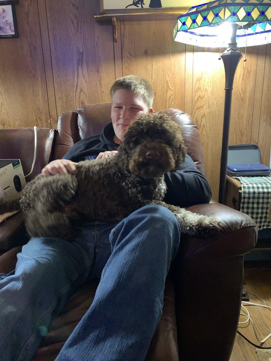 My eldest grandson and my puppy. #Lagotto #grandkids #fun #love ❤️ https://t.co/aiFtq8oYcl