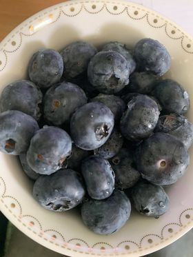 Yes, I have an addiction. #Blueberry #Melbourne #Australia https://t.co/fRf5R3LAh2