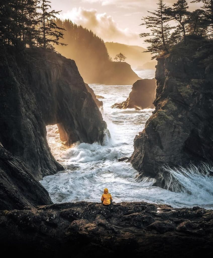 You will fall in love with this views 🔝🌍❤️🙉  -------------------------------------------------  📍 Samuel H. Boardman State Scenic Corridor  📸 Credit: @kyle.fredrickson  #theview #travel #explore #nature #inlove #takemethere #coveredtraveler #wanderer #amazingview #traveler https://t.co/yuz6rrnuH6