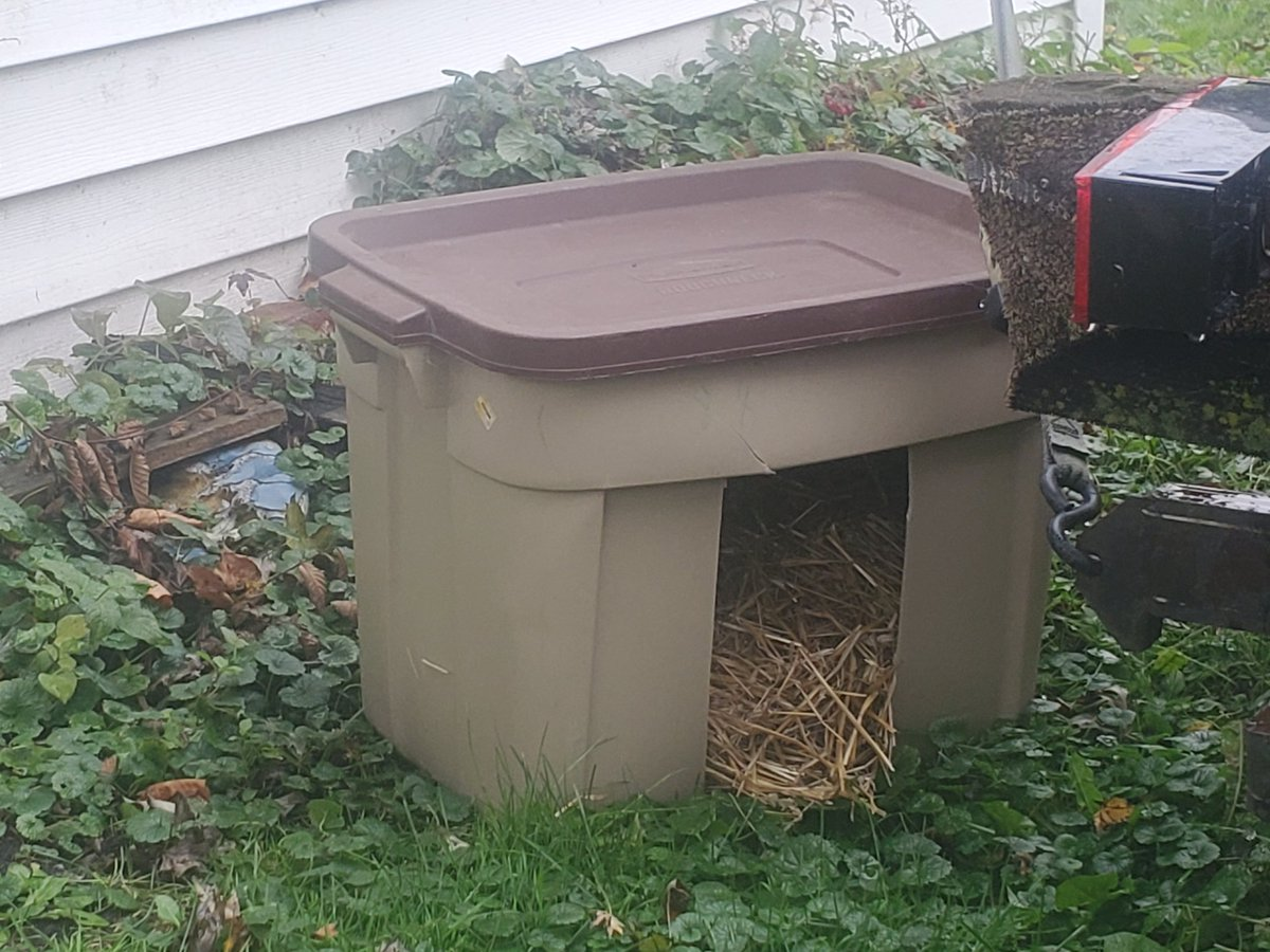 Momma made two little huts for the outdoor critters. Not fancy, unfortunately. But it's something https://t.co/nwJk65oquz