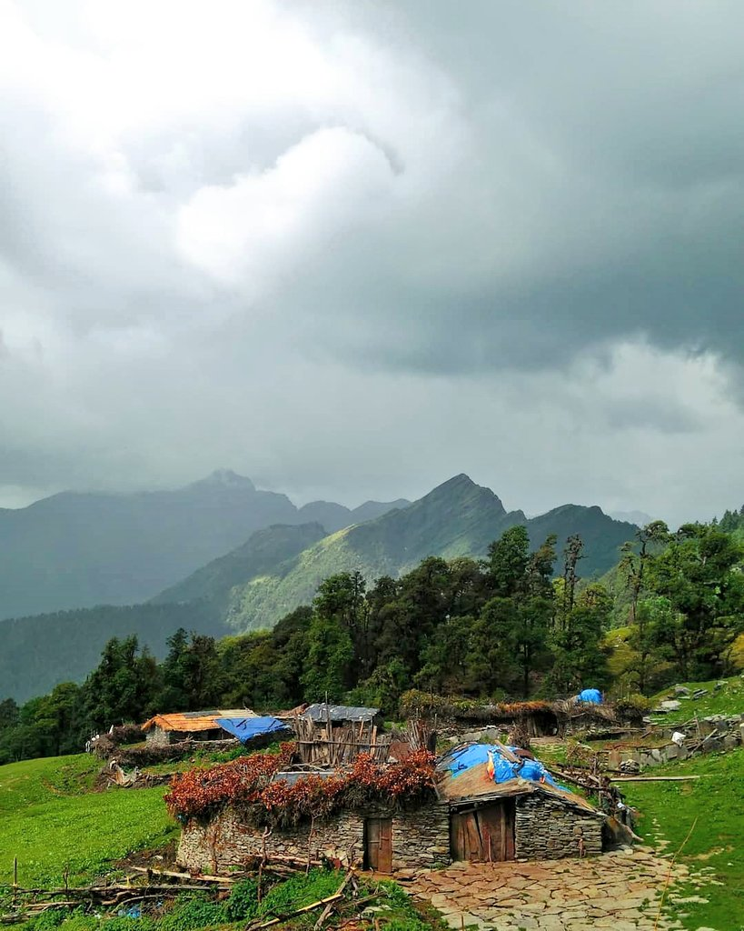 #chopta is an unspoiled natural destination lying in the lap of the #Uttarakhand Himalayas and offers views of the imposing #Himalayan range including Trishul,Nanda DeviandChaukhamba. It is located at an elevation 8790ft above sea level. #nature #wellness #Camping #offbeatuk https://t.co/gyER8wneoX