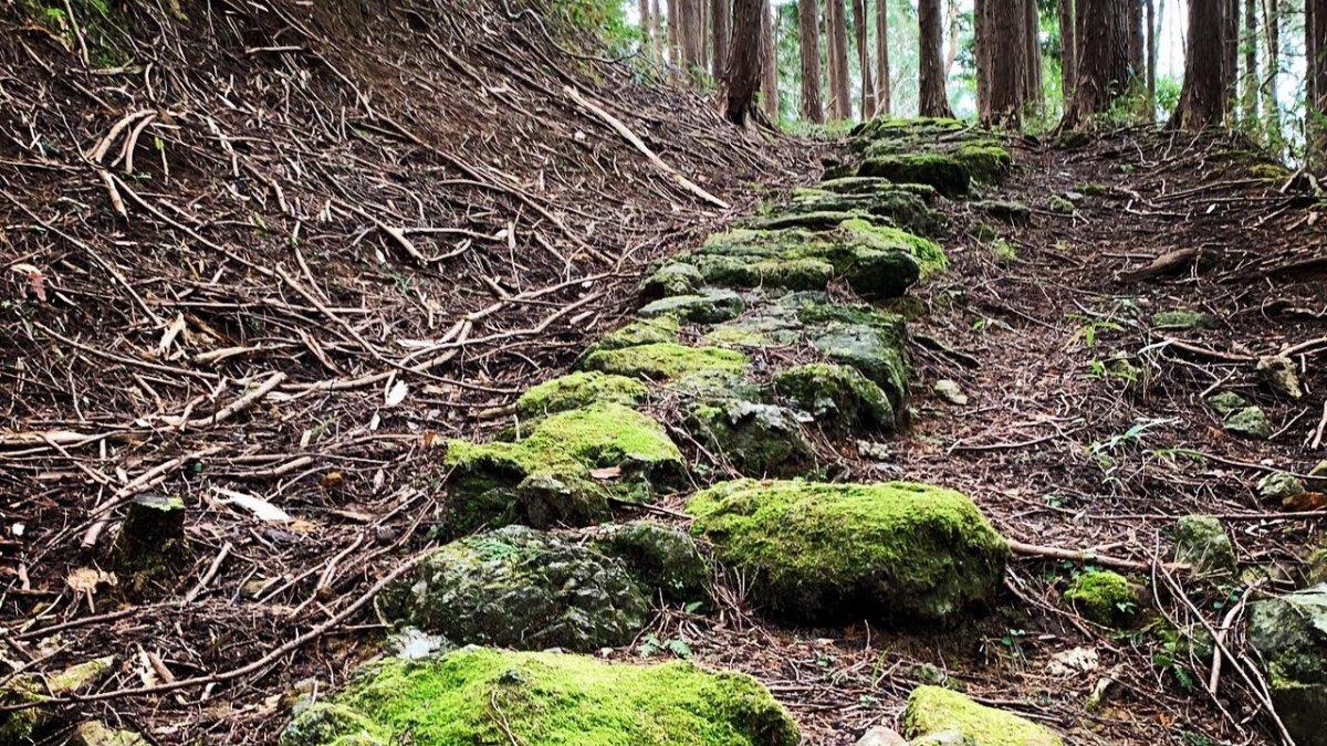 Restoring an ancient pilgrimage pathway in Northern Kyōto – the old Miyazu Kodō https://t.co/DF9EcJNHuL #MiyazuKodo #restoration https://t.co/4hvP1TJvof