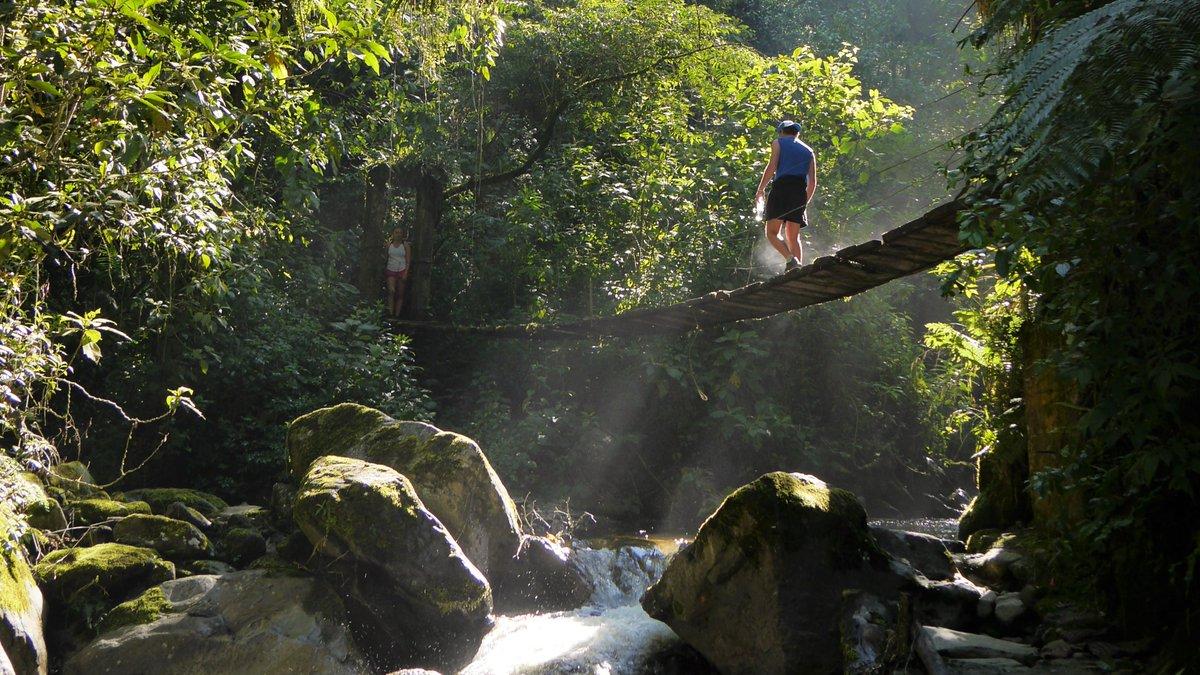 """Spannende #Reisereportagen: U.a.: Kolumbiens Zona Cafetera: """"Die höchsten Palmen der Welt, gemütliches Kleinstadtflair und schwirrende Kolibris...  https://t.co/8viatx6uvJ @Spurenwechsler  #Reiseblog #slowtravel #Reisen #travelphotography #NaturePhotography #nature #outdoor https://t.co/ZzqoXueKtW"""