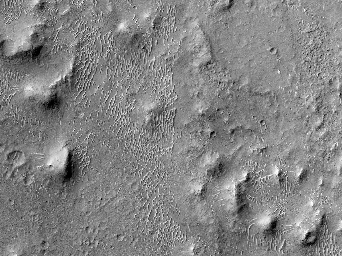 HiPOD 27 Οκτώβριου 2020 Κορυφογραμμές στα δυτικά του Οροπεδίου του Μεσημβρινού (Meridiani Planum)  Ο στόχος αυτής της παρατήρησης είναι η σύγκριση της τοπογραφίας αυτών των κορυφογραμμών... https://t.co/mI03aEACkN  NASA/JPL/UArizona #Mars #NASA #επιστήμη #ελληνικά #Ελλάς https://t.co/RQfKcVYcXm