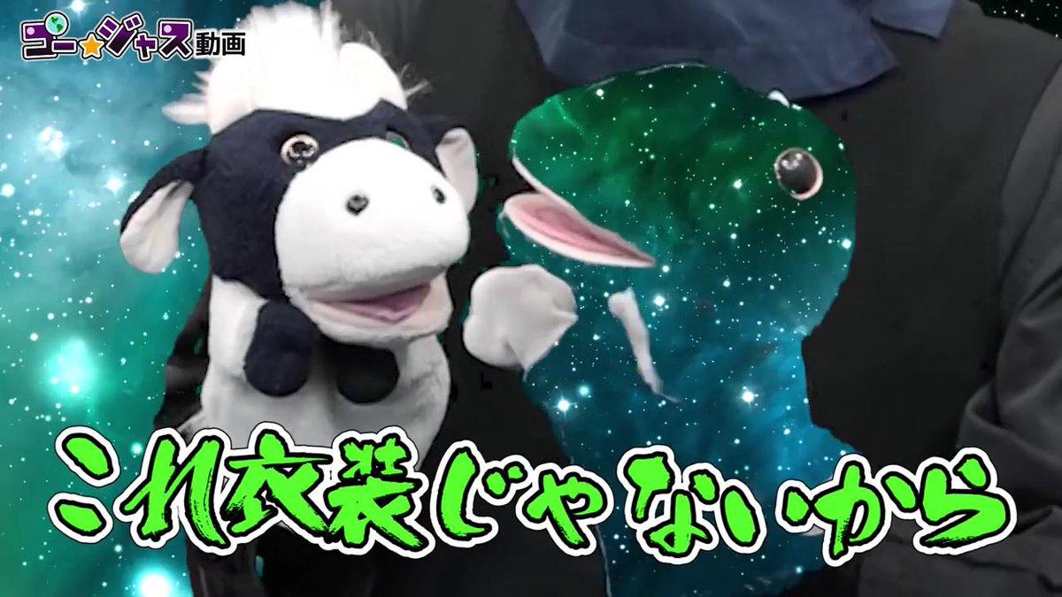『緑ダメだって言ったじゃん』と言われた時のカエル。#カエルです #グリーンバック