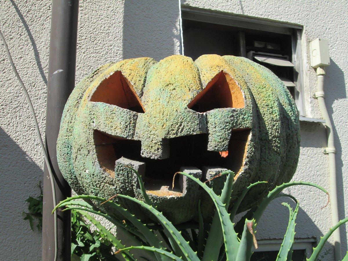大阪散歩・森ノ宮  『ハロウィンかぼちゃ』  路地裏で見かけたこのオブジェ… かぼちゃをくり抜いたものでは無さそうですが、大作でした🙂 https://t.co/haQiz9h32X
