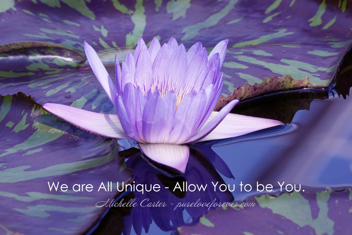 We are All Unique. Allow You to Be You! #quotes #spiritual https://t.co/EzBI4IvBwj