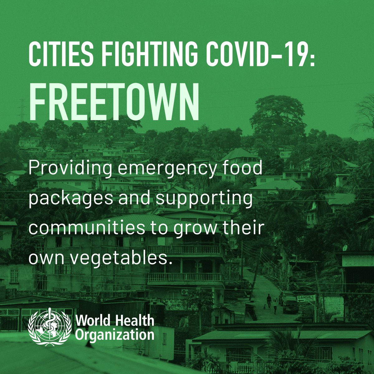 City leadership in Freetown, Sierra Leone 🇸🇱 , provides emergency food packages and supports communities to grow their own vegetables.   👉 https://t.co/fwNAForBxC  #cities4health https://t.co/TSfrjy1z60