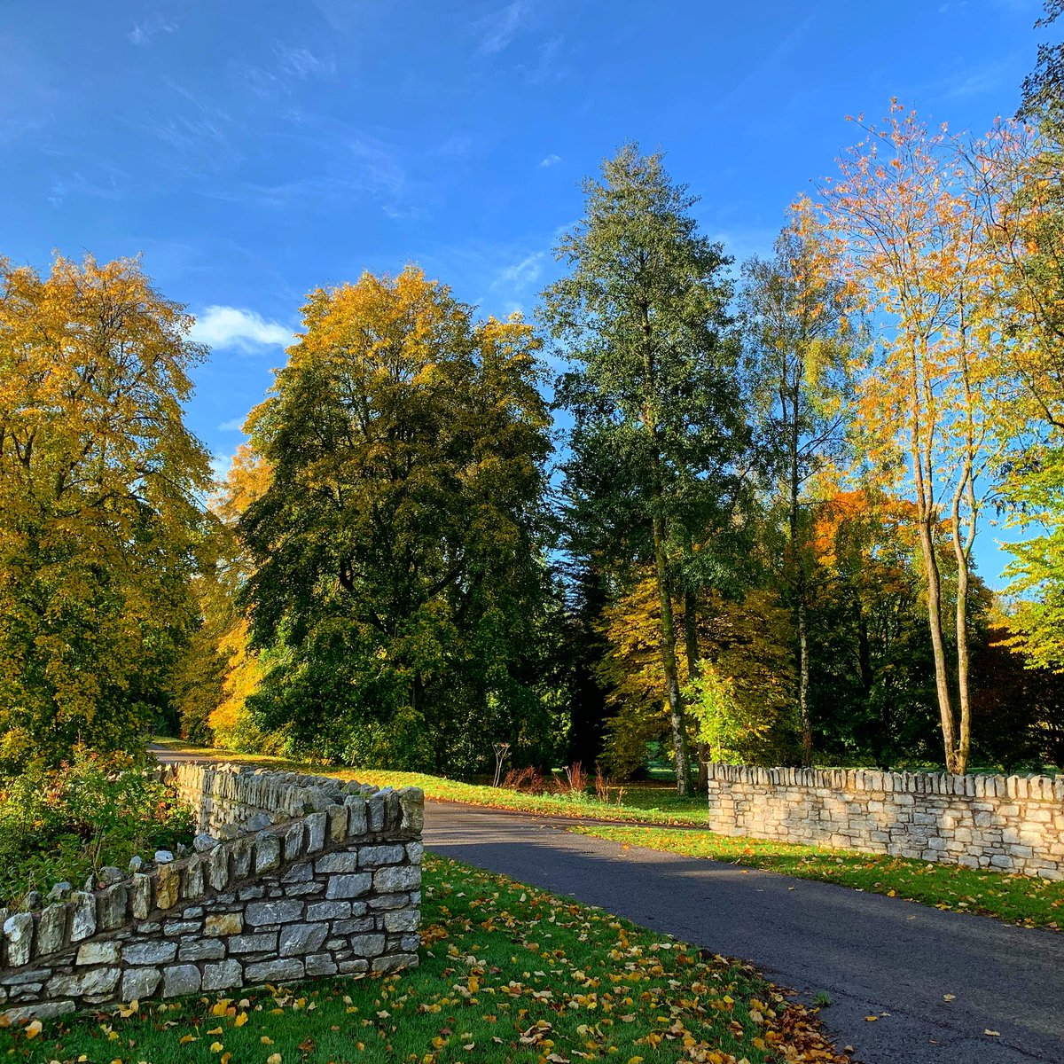 Our opening times have changed. We will now be closed at 5pm and last admission is at 4pm!  #blarneycastleandgardens #purecorkwelcomes #cork #ireland #like #follow #pictureoftheday #picoftheday #photography #autumn #autumnleaves #castle https://t.co/VxneWuZucc