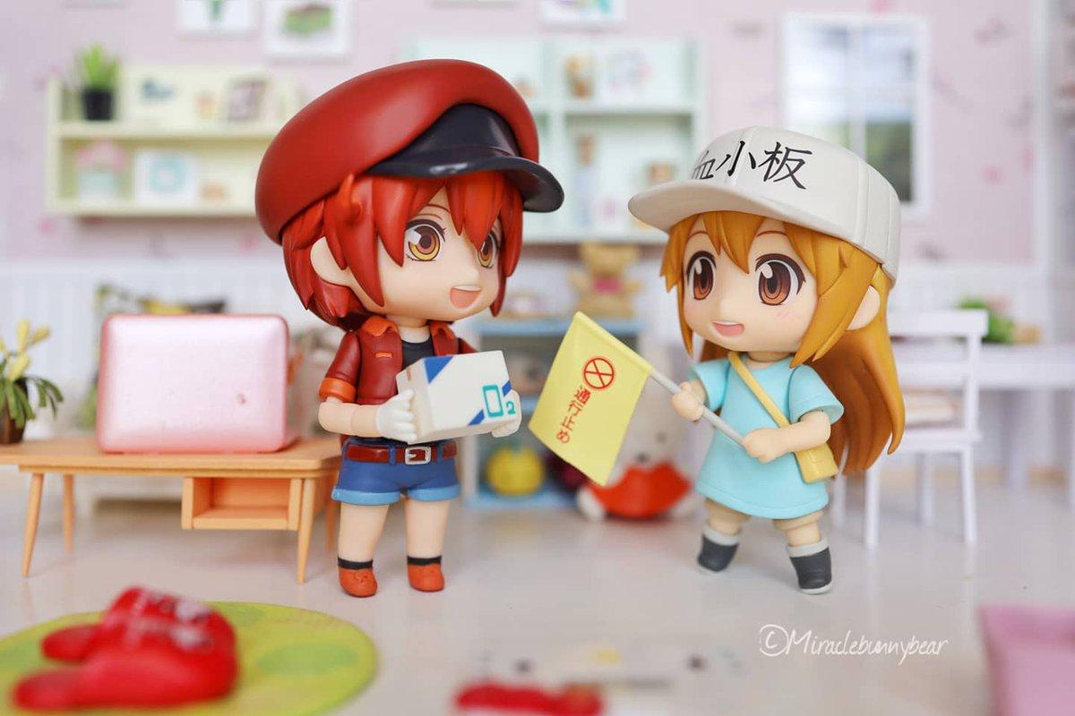 Red blood cell and Platelet on the mission  #nendoroid #cellsatwork #redbloodcell #platelet #animegirl #animegirls #animefigure  #rement #figurecollector #figurines #diorama #rementthailand #nendoroids #tokyootakumode #figurecollection  #nendography #ミニチュア #figurine https://t.co/tC59pYsk1Z