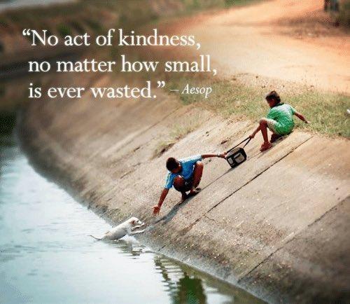 It doesn't matter how big 🤷♀️ . . #kindnessmatters #bekind #kindness #kindwords #kindact #kindnessiscontagious #kindworld #kind #kindnessisfree #kindnesscounts https://t.co/byavKxMwHL