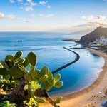 Image for the Tweet beginning: Unsure which Canary Island to