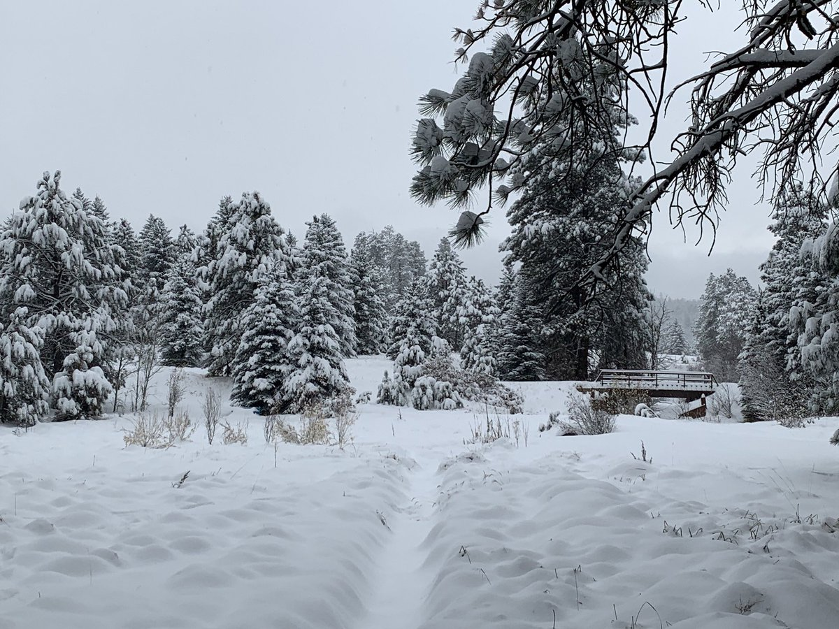 20+ inches of snow yesterday, and it's snowing again! I am so tired of shoveling, lol. #nmwx #jemezmountains #newmexico #landofenchantment #and snow https://t.co/HAZZ4yiYPj