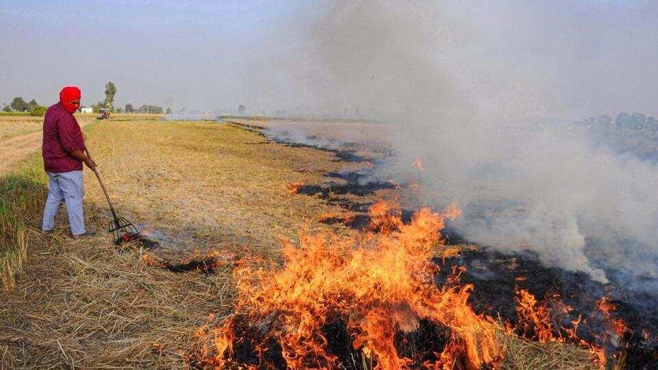 Air quality depletes as Uttar Pradesh records spike in farm fires, farmers fined  https://t.co/UwK07sOxt0 https://t.co/j5WZZCSyKW