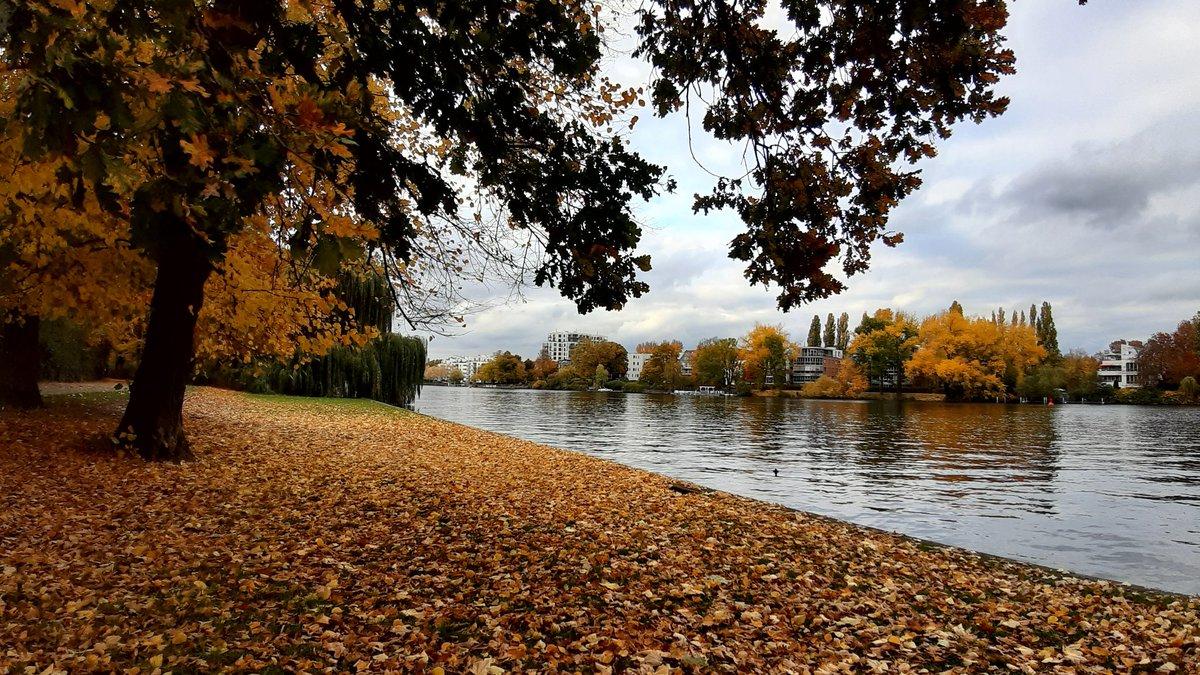 Autumn in #Berlin 🍁🌰