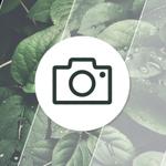 Image for the Tweet beginning: Smartphone camera showdown: Pixel 5,