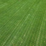 Image for the Tweet beginning: Wrapping up another 3x1.5 #DryJect