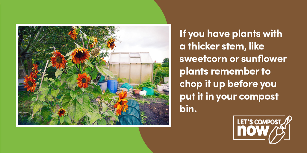 #DYK you can compost all your leaves and flowers from your garden.   Just remember to chop up any large, thick stems before adding them to your home compost bin.  #LetsCompostNow #WednesdayWisdom