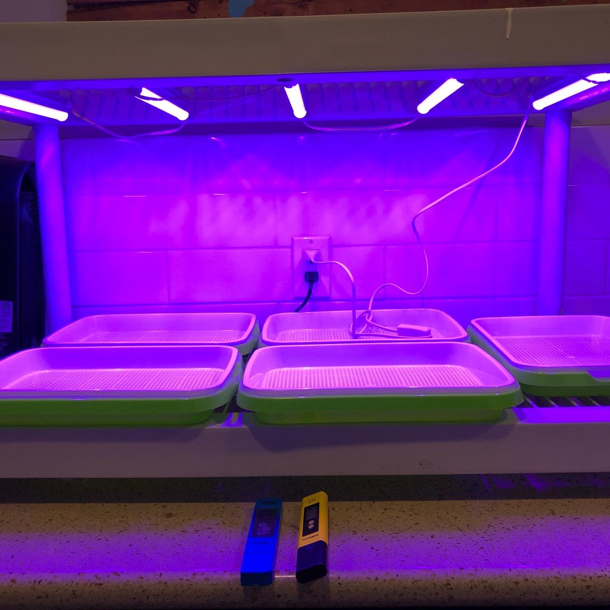My next project is up and running. #MicroGreens  Otryad T5 Led Grow Lights Bar from Amazon, 5x Seed sprouting trays and a mix bag of seeds.  After doing an 'A' frame hydroponic system during the summer I've decided to try some smaller indoor options. #GrowYourOwn #MicroGrow https://t.co/Y3J4yhHHcW
