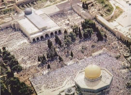 كما أن المسجد الأقصى يعدُّ من المقدسات الإسلامية التي أسرى إليه الرسول محمد، والتي دنَّسها الإسرائيليون من سبعين سنة وما يزالون، ويمكنكم الضغط على حكامكم لمقاطعة إسرائيل نصرةً لهذا المقدّس وأملاً بتحريره. https://t.co/sS2s7Kq7PP
