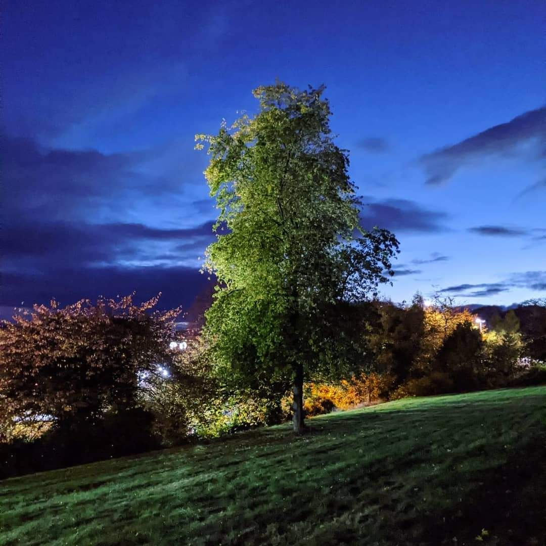TinyLove takes some of the most wonderful photos I've ever seen. Dundee is beautiful...from the right angle and in the right lighting!  #dundee #dundeeatdusk #photography #tinylove https://t.co/rMgegEnm4x