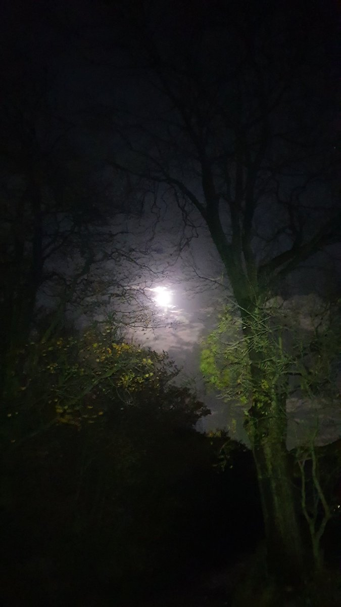 An evening walk, back in time for #gbbo2020 #autumn #clearsky #autumnmoon https://t.co/WNmt5s6nPm