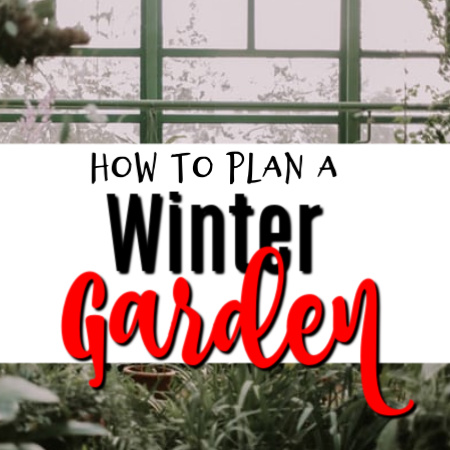 Making Your Own Winter Garden Plan  https://t.co/CDnuFfG8No #plant #veggies #gardeningtips #gardeninglove #gardeninglife #vegetablegarden #growyourown #gardeningisfun #gardeningproblems #gardening101 https://t.co/AU1hy1yUwt