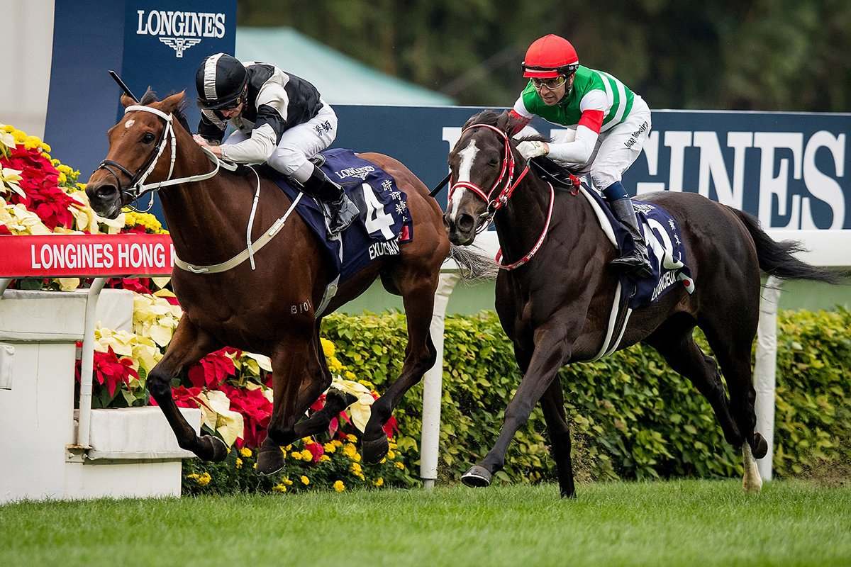 LONGINES Hong Kong International Races attracts strong nominations. #HKIR #HKracing   Read here 👉 https://t.co/znLjTgybkG https://t.co/IvpVfzwnJ0