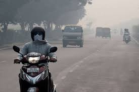 'Air pollution linked to 15% of virus deaths globally: Research' - Read more ➡️⬇️ https://t.co/bp6NpyLyI7  #AirPollution #Research #GreenhouseGas #Covid19 #Pandemic #India #IntegraVentures https://t.co/Nesu6tvCfu