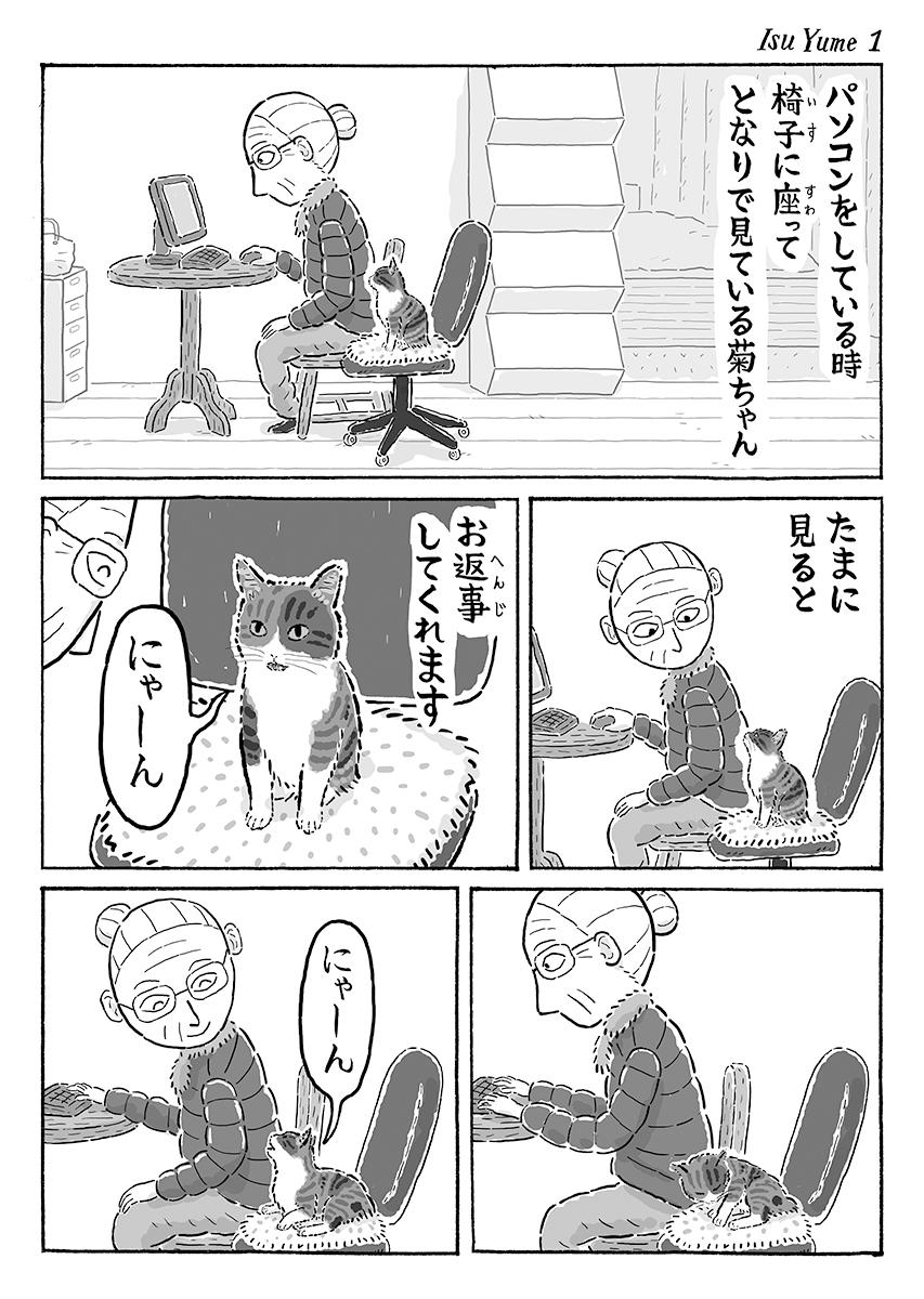 椅子の上で夢の中 #猫の菊ちゃん