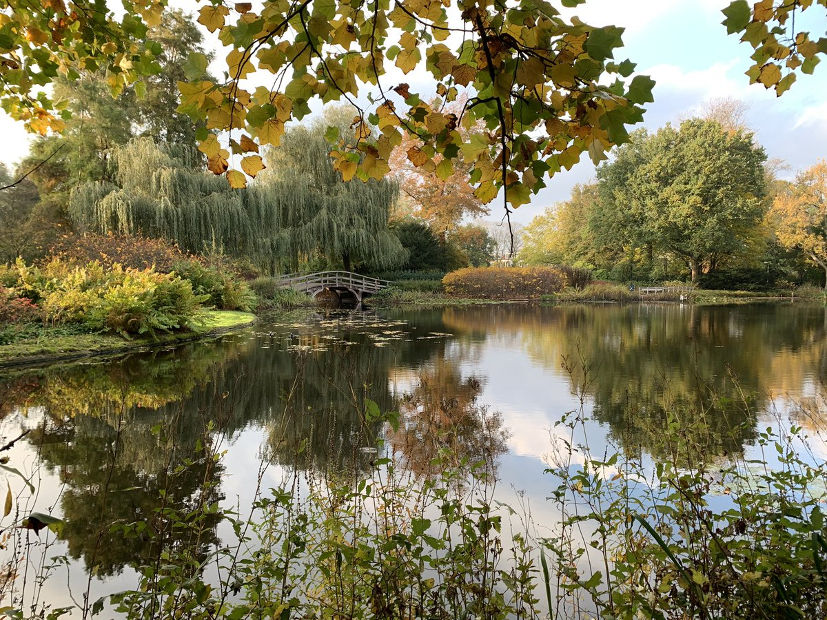 'The Bridge' (2020) Location: Broersepark, Amstelveen NL. Photography. . by @JWB_9 #photography #photo #foto #fotografie #fotografia #kunst #art #modernart #photoart #visualart #artist #beauty #nature #silence #hope https://t.co/okyUf0iCH0