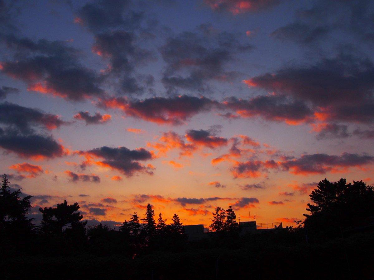今朝😂✨ 綺麗な朝を残したい🧡  2020.10.28  #キリトリセカイ  #ファインダー越しの私の世界  #ミラーレス一眼 https://t.co/cwUCjznaxq