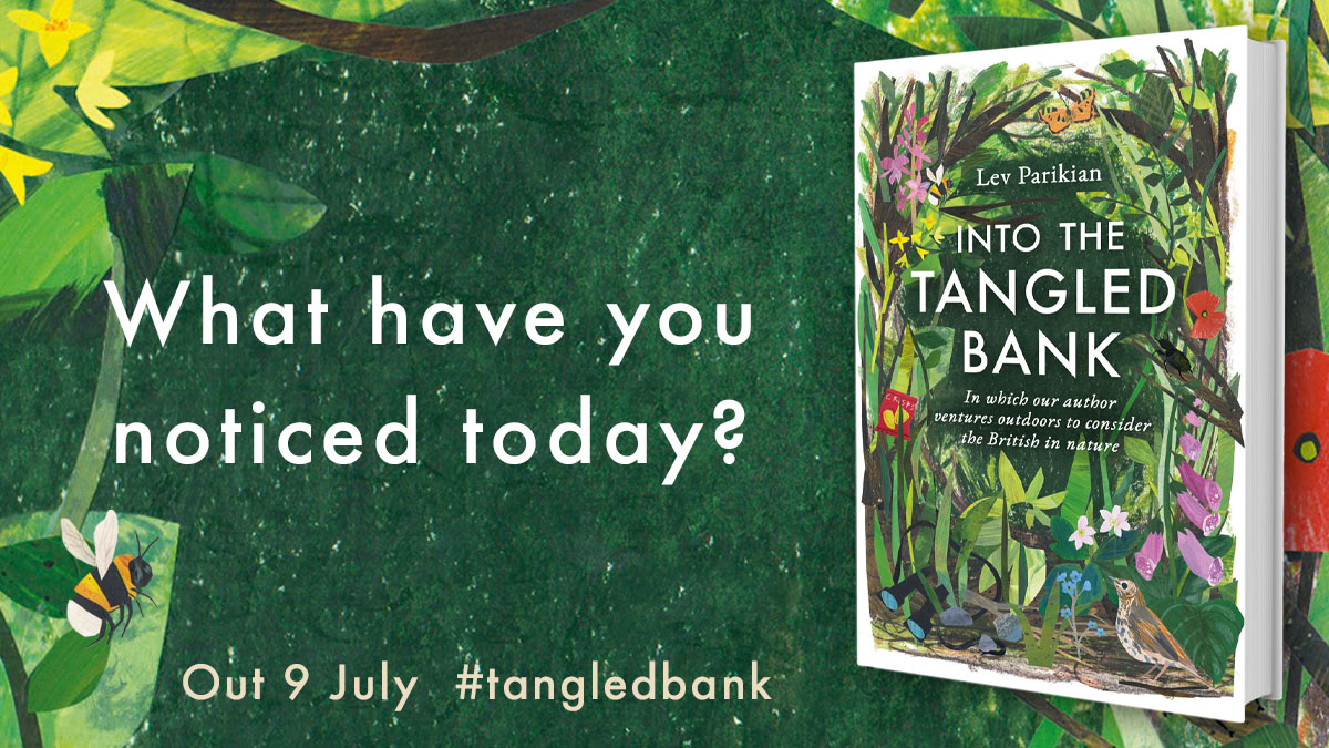 What a lovely interview with @LevParikian and Norfolk Wildlife Trusts, happily recorded for us to tune into on YouTube > bit.ly/3jBLKdH And if you buy a copy of #TangledBank from @sounds_wild theyre donating 10% of EVERY sale to @NorfolkWT >>> bit.ly/3mypAem